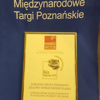 Wyróżnienie-dyplom na tle MTP.jpeg